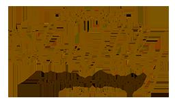logo_elen_gold_256x138_24bitsb